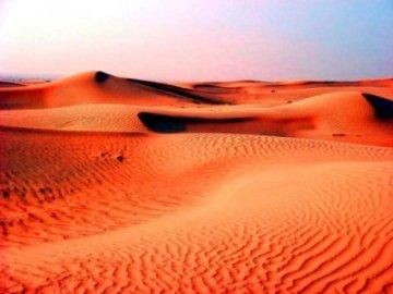 Как «здоровая» пустыня может приносить прибыль?