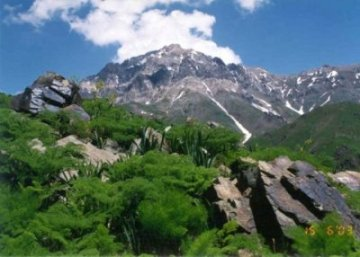 Природные богатства Узбекистана и их охрана