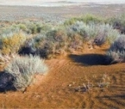 Агрогеографические исследо и земельный кадастр