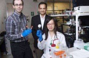 Создан материал, отделяющий химикаты от воды