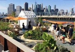 Плавучий эко-город в Нью-Йорке
