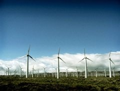 Британия побила рекорд по выработке энергии ветра