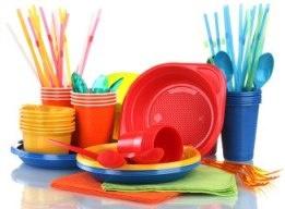 В Дели официально введен запрет на использование одноразового пластика