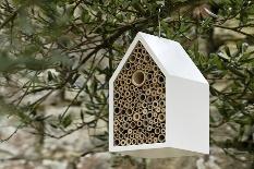 В одном из городов Испании появился отель для насекомых